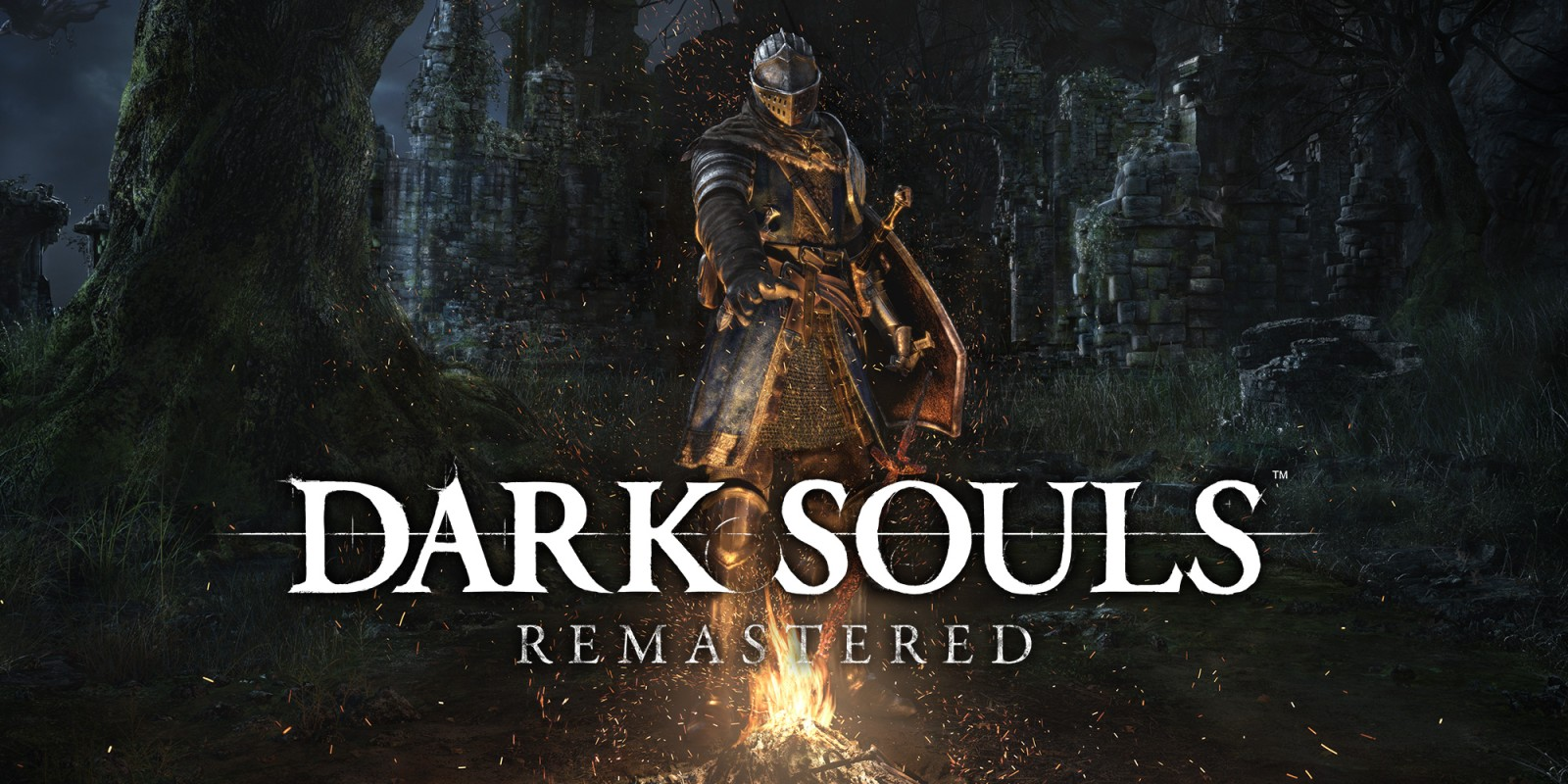Dark Souls Remastered Switch Delayed to Summer 2018