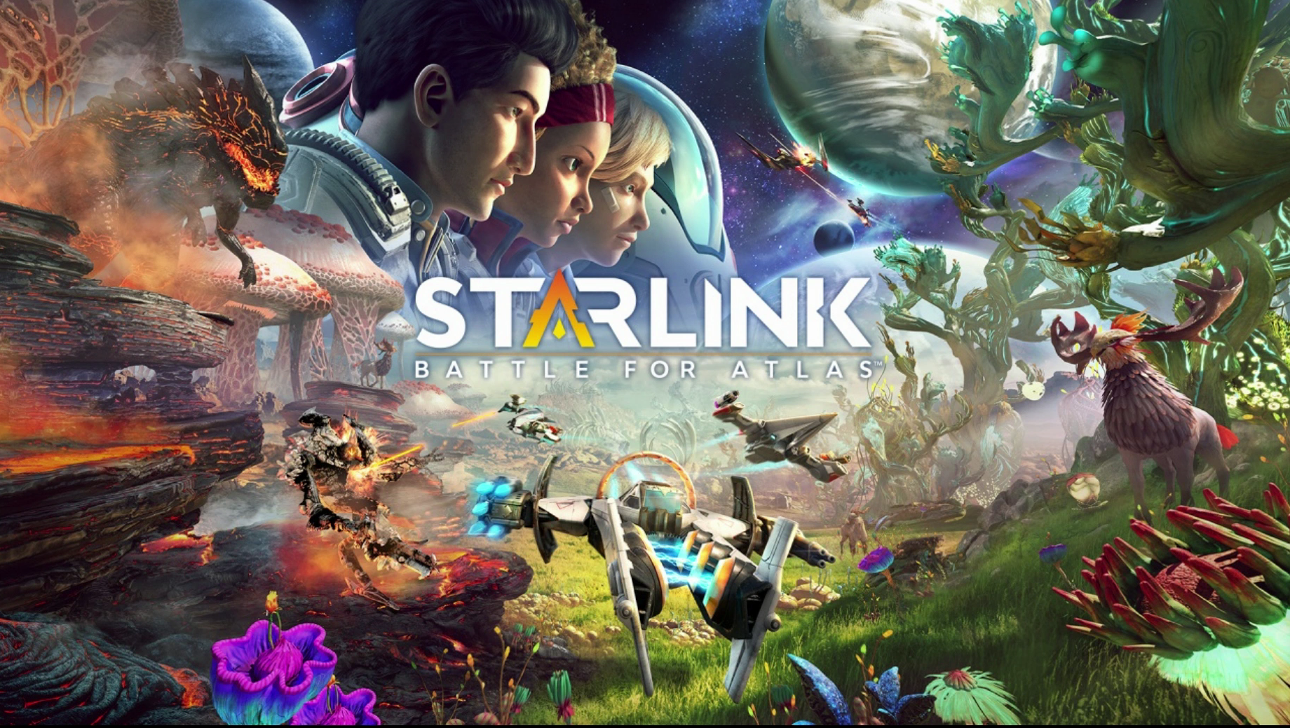 starlink switch