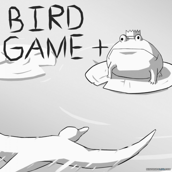 bird game + cover
